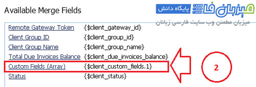 Custom-Client-Fields-4-2