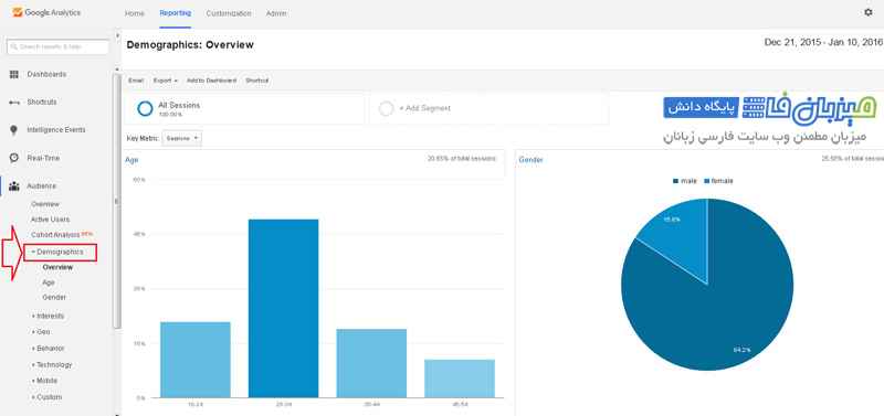google-analytics-Audience-12