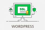 آموزش نحوه نصب ssl روی وردپرس
