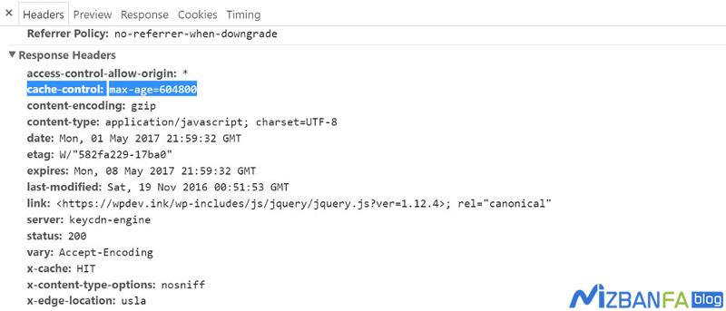 رفع ارور leverage browser caching در GTmetrix و مدیریت کش سایت