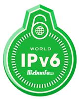 امنیت ipv4